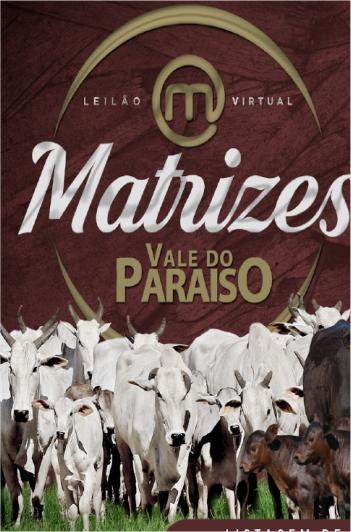 Virtual Matrizes Vale do Paraíso