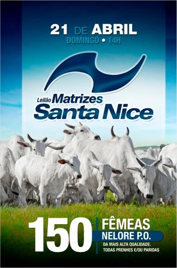 Virtual Matrizes Nelore Santa Nice