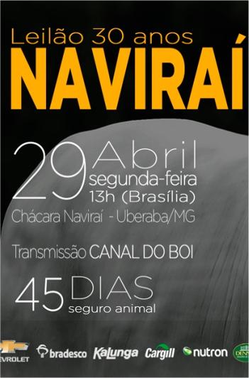 30 Anos Naviraí