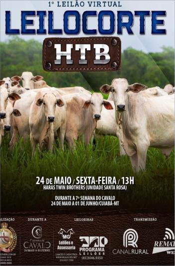 1º Virtual Leilocorte HTB