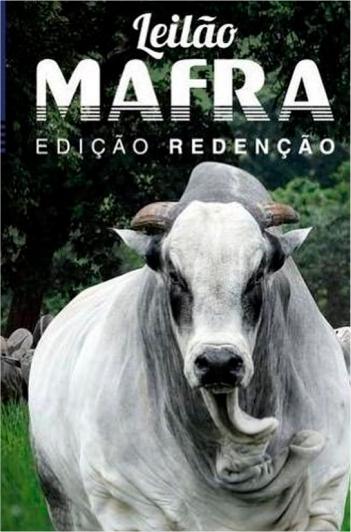 Leilão Mafra - Edição Redenção