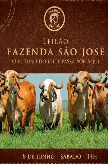 Leilão Fazenda São José