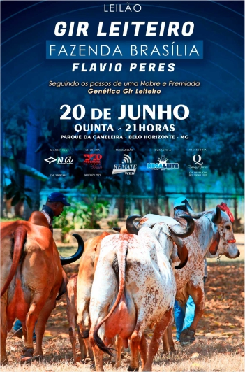 Leilão Gir Leiteiro Fazenda Brasília
