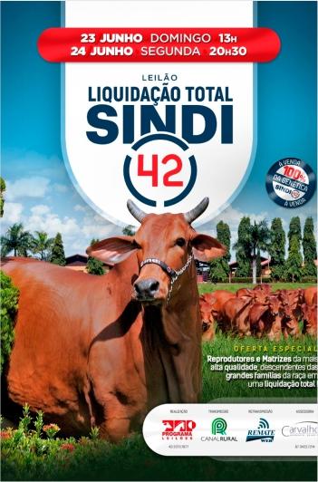Liquidação Total Sindi 42 - 2º Etapa