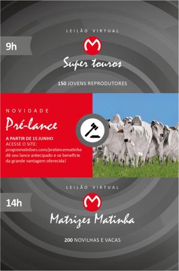 Maratona Matinha 2019 - Matrizes