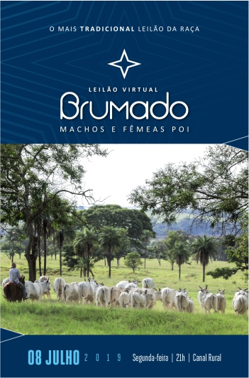 Virtual Brumado - Machos e Fêmeas POI
