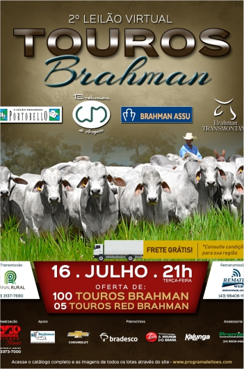 2º Virtual Touros Brahman