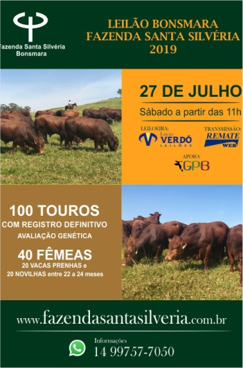 Leilão Bonsmara Fazenda Santa Silvéria 2019