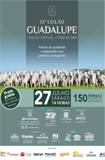 12º Leilão Guadalupe - Fêmeas