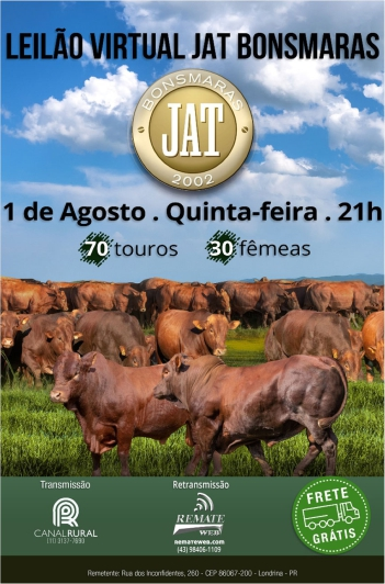 Virtual JAT Bonsmaras