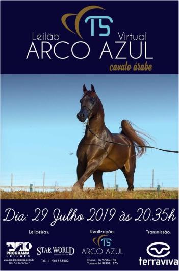 Virtual Haras Arco Azul - Cavalo Árabe