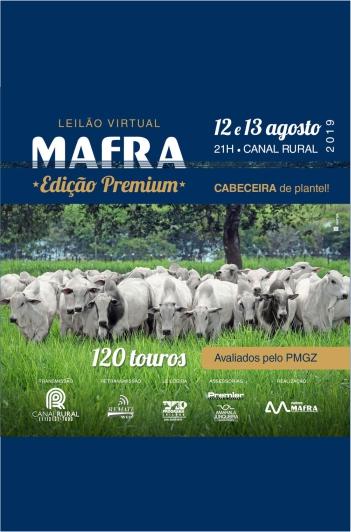 Virtual Mafra - Edição Premium - 2º Etapa