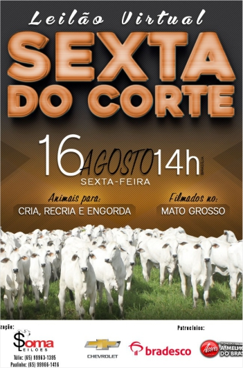 Virtual Sexta do Corte - Programa & Soma Leilões