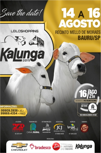 Leiloshopping Kalunga 2019