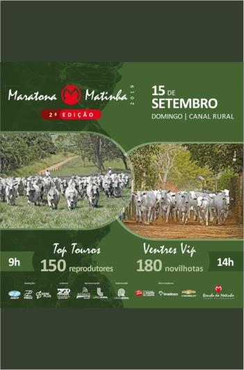 2º Maratona Matinha - Ventres VIP