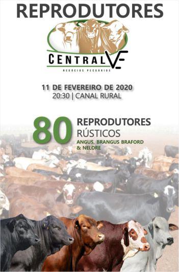 4º Virtual Reprodutores Central VE