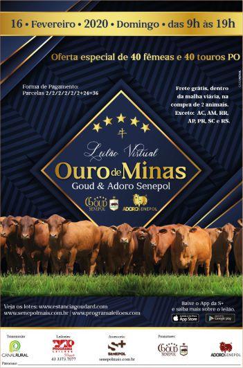 Virtual Ouro de Minas - Goud & Adoro Senepol