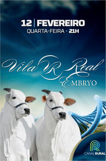 4º Virtual Vila Real Embryo