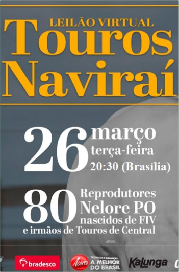 Virtual Touros Naviraí
