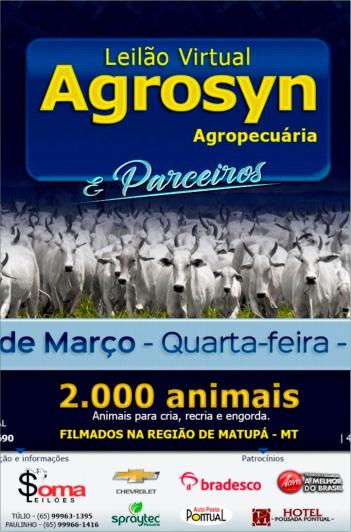 Virtual Gado de Corte - Agrosyn Agropec.