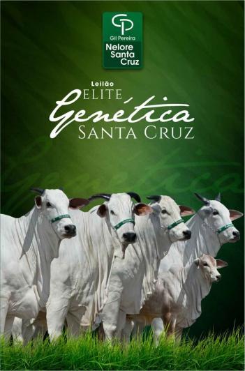 Virtual Elite Genética Santa Cruz