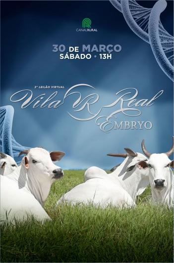 3º Virtual Nelore Vila Real Embryo