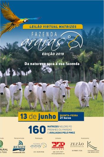 Virtual Matrizes Fazenda Araras - 2019