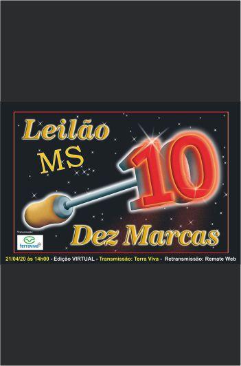Leilão  Corte 10 Marcas - MS