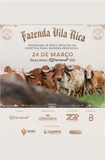 Leilão Fazenda Vila Rica - Gir Leiteiro