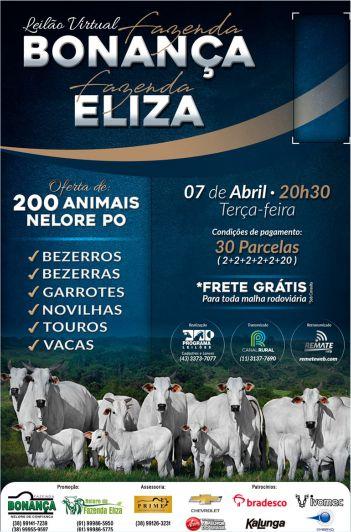 Virtual Fazenda Bonança & Fazenda Eliza