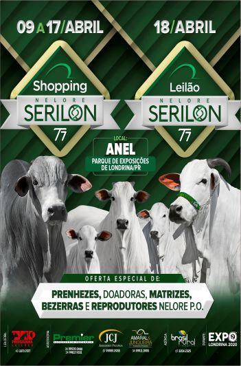 Leilão Nelore Serilon