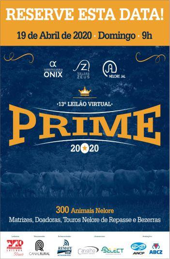13º Virtual Prime
