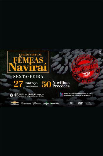 Virtual Fêmeas Naviraí