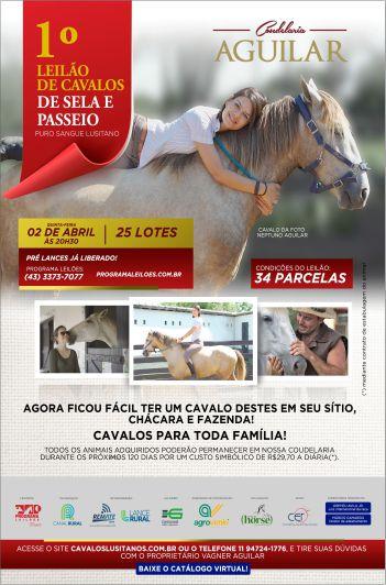 1º Leilão Cavalos Sela de Passeio