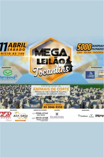 Mega Leilão Tocantins