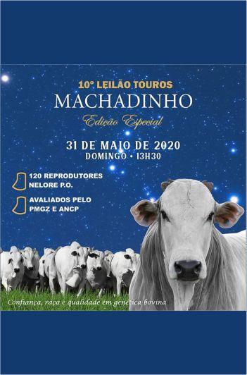 10º Leilão Touros  Machadinho -Edição Especial
