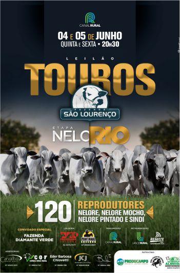 Leilão Touros Fazenda São Lourenço - 1º Etapa