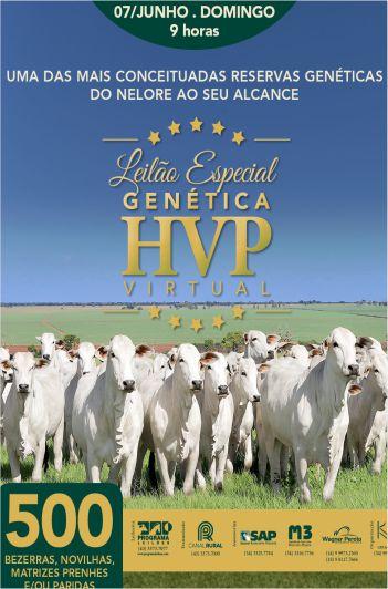 Leilão Especial Genética HVP