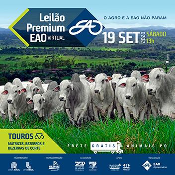Leilão Premium EAO Virtual