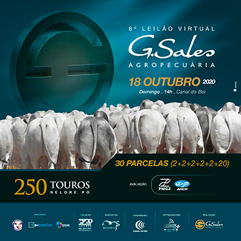 Leilão Virtual Touros G Sales