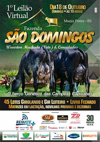 1° Leilão Virtual Fazenda São Domingos