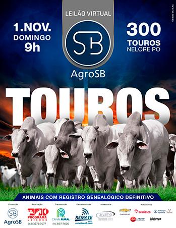 Leilão Virtual Agro SB Touros
