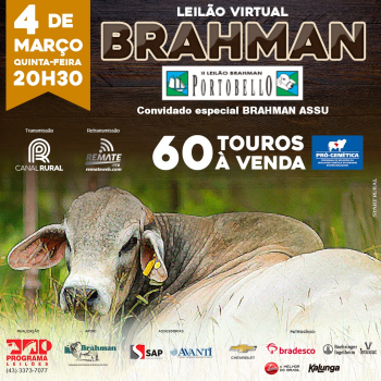 Leilão Virtual Brahman Portobello