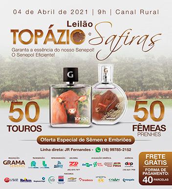 Leilão Topázio e Safiras