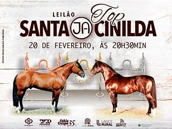 Leilão Top Santa JA Cinilda