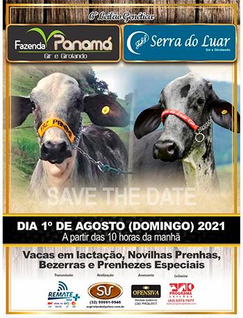 6° Leilão Genética Fazenda Panamá e Serra do Luar
