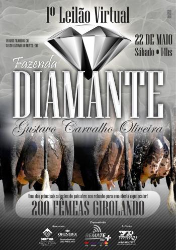 1° Leilão Virtual Fazenda Diamante