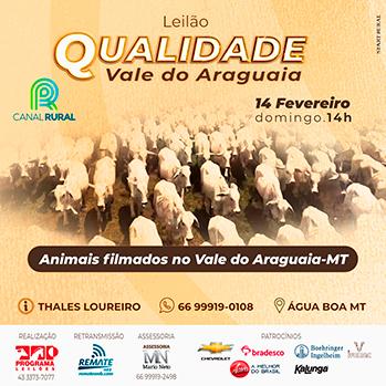Leilão Qualidade Vale do Araguaia