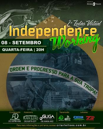 2° Leilão Virtual Independence Working