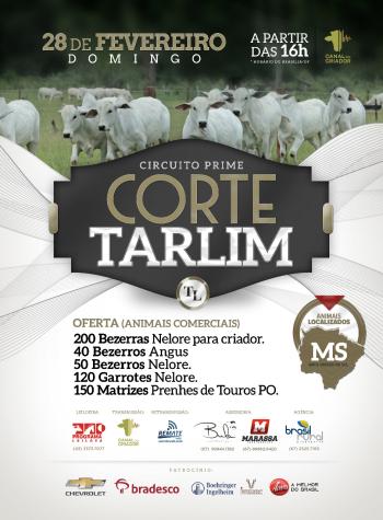 Circuito Prime - Corte Tarlim